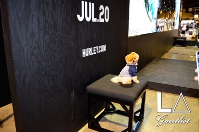 Jiff The Pom at the Hurley Booth at the 2015 Agenda Show